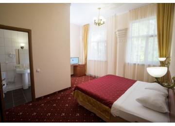 Парк-отель Романова Стандарт 2-местный